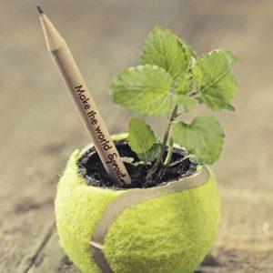 Crayons à planter | Idées cadeaux insolites et originales écologique