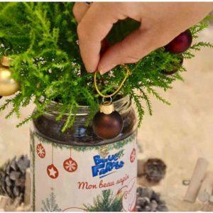 Sapin de Noël écolo en pot | Idées cadeaux insolites