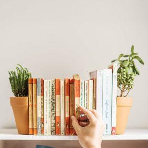 Le pot de fleurs Serre-livres | Idées cadeaux insolites